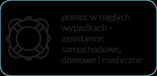 addon-assistance